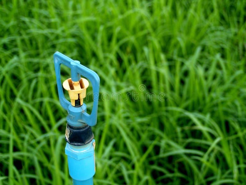 Download Sprinkler  5 stock photo. Image of irrigation, imbue, doctor - 1721928