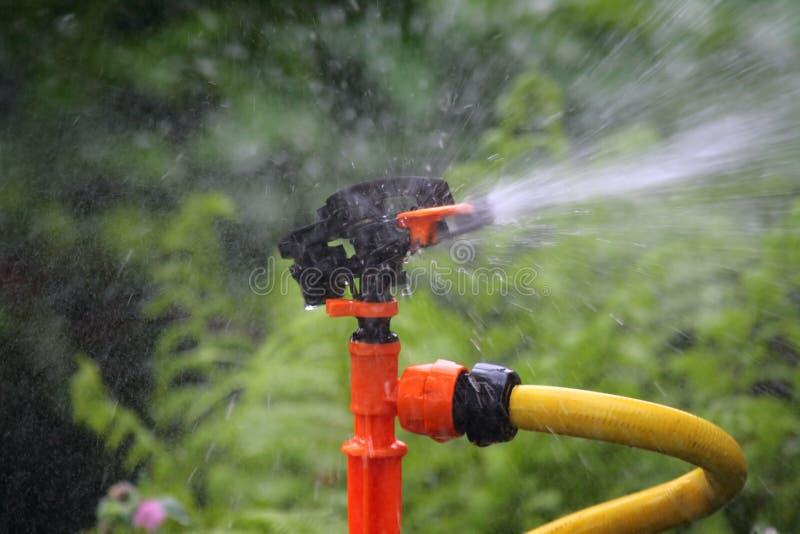 Sprinkler. stock photo