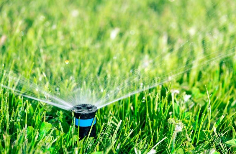 Sprinkler head stock image