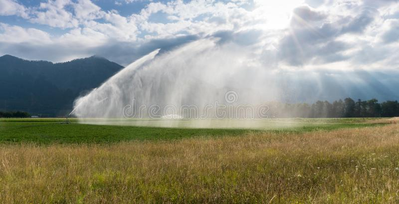 Sprinkler and irrigation system on a freshly planted agricultural field under a cloudy expressive sky with the morning sun shining royalty free stock images