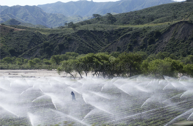 Sprinkler Man royalty free stock images