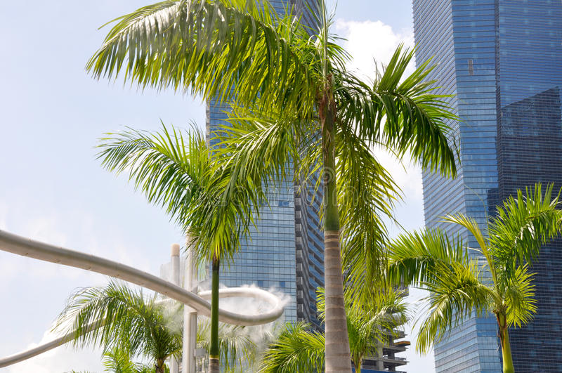 Download Sprinkler And Palm Tree (Singapore) Stock Photo - Image of skyline, cityscape: 23002778