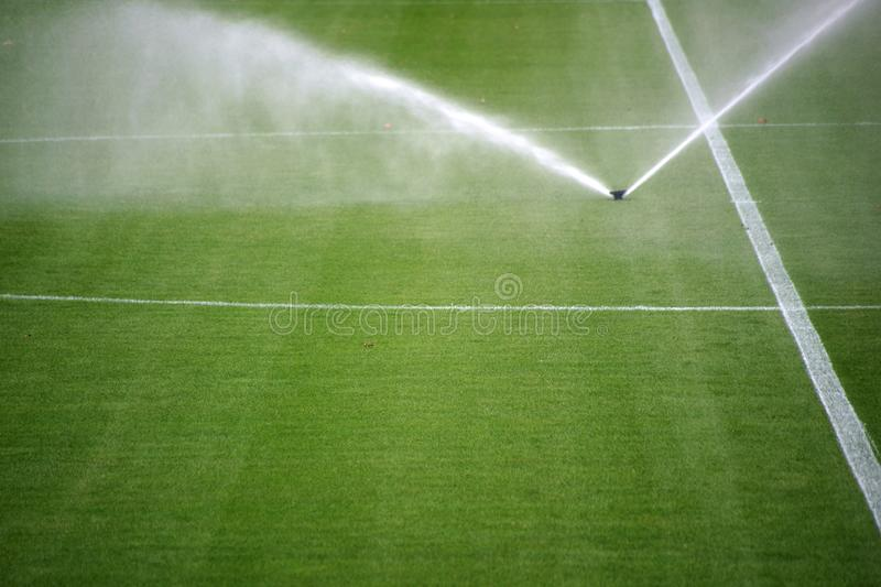 Sprinkler soccer field. The green lawn surface of a soccer field with a irrigation system royalty free stock photos