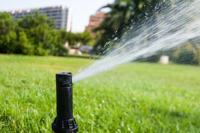 Sprinkler spraying water. Closeup of sprinkler spraying water over grass in city park. Valencia, Spain stock photos