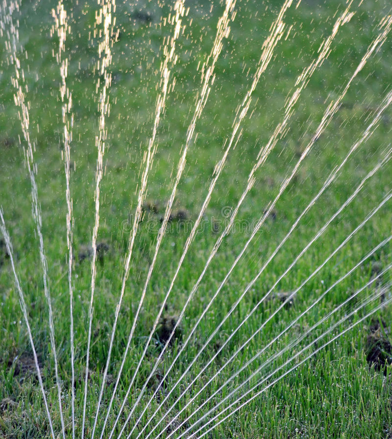 Sprinkler spraying water on grass in field stock image