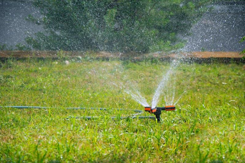 Sprinkler system. Water sprinklers irrigating green grass stock photo