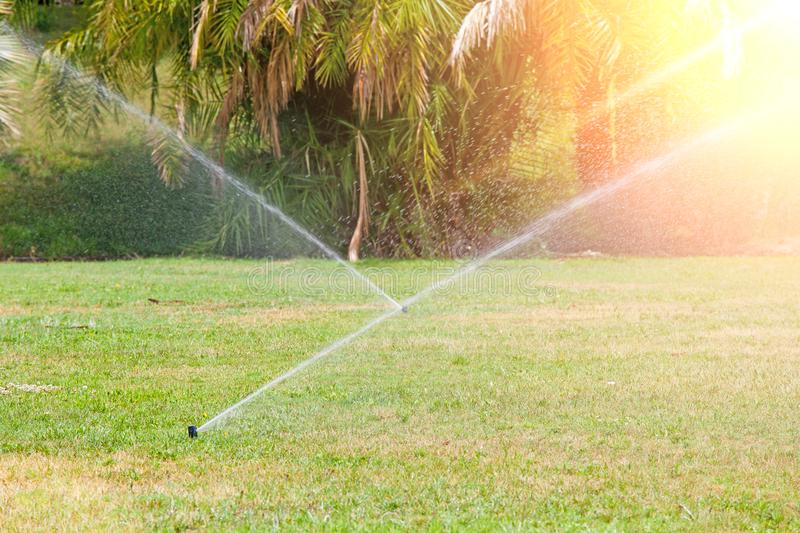 Sprinkler system watering the lawn . Summer sunny day royalty free stock photo