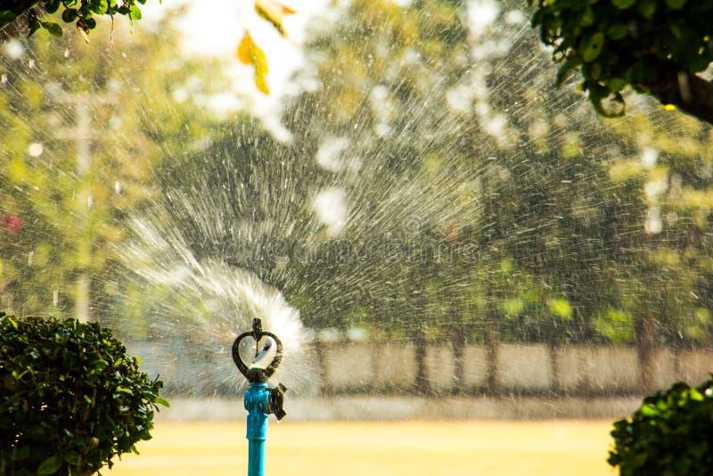 Sprinkler water stock photos