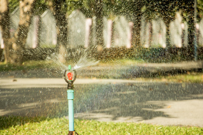 Sprinkler water in the garden royalty free stock photography