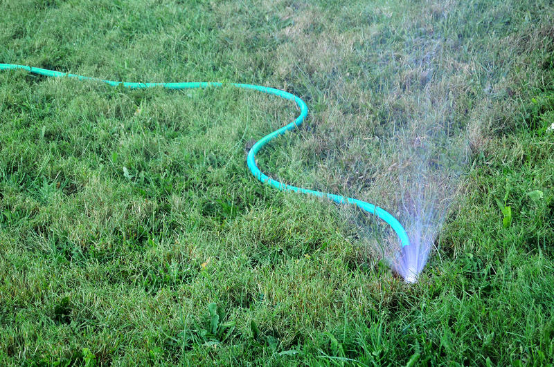 Sprinkler Watering the Grass Lawn royalty free stock images