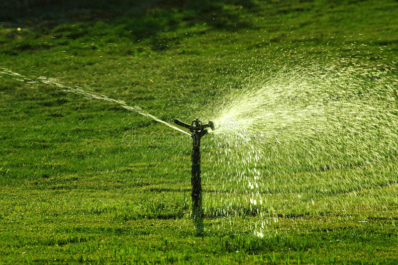 Sprinkler watering green lawn royalty free stock photo