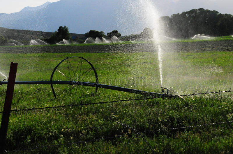 Sprinklers in a pasture. stock photography