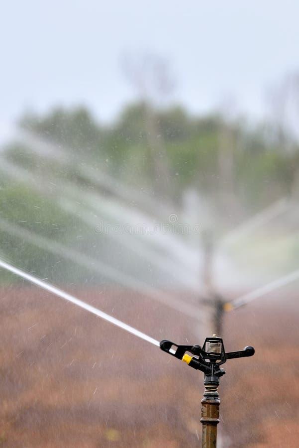 Sprinklers. Sprinkler irrigation system on agricultural land near Skeerpoort South africa royalty free stock image