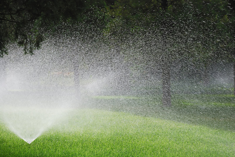 Sprinkling plants. This is sprinkling machine in the garden royalty free stock photo