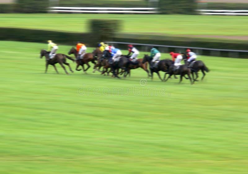 Sprint de chemin de cheval images libres de droits