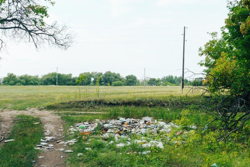 Spritt avfall i en grön sommarskog, miljöbelastning 1 arkivbilder