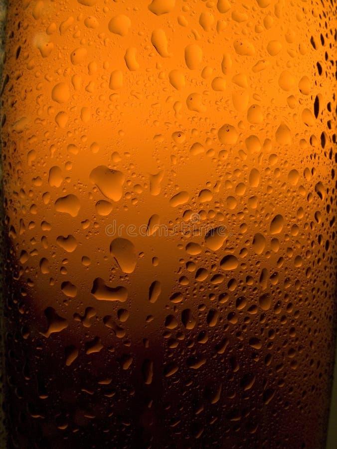 Spritzed Beer Bottle royalty free stock image