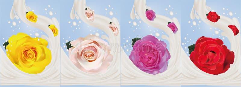 spritzt realistische Rose 3d mit Milch Nahaufnahme Schöne Rosen gelb, rot, Rosa und Beige Auch im corel abgehobenen Betrag milch vektor abbildung