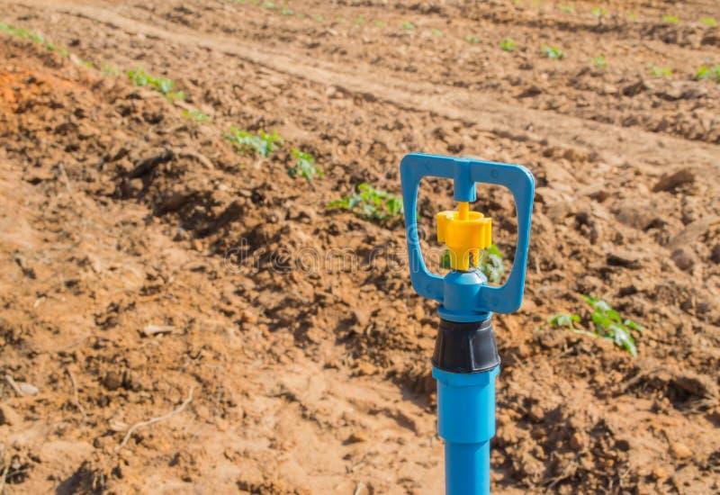 Download Sproeier stock afbeelding. Afbeelding bestaande uit landbouw - 39117617