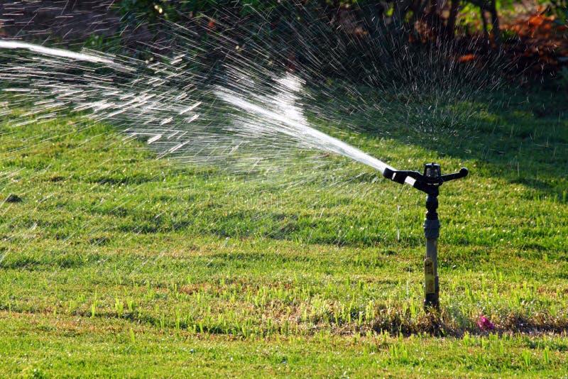 Sproeier die groen gazon water geeft stock afbeelding