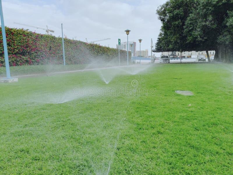 sproeier het water geven op groen gras royalty-vrije stock foto's