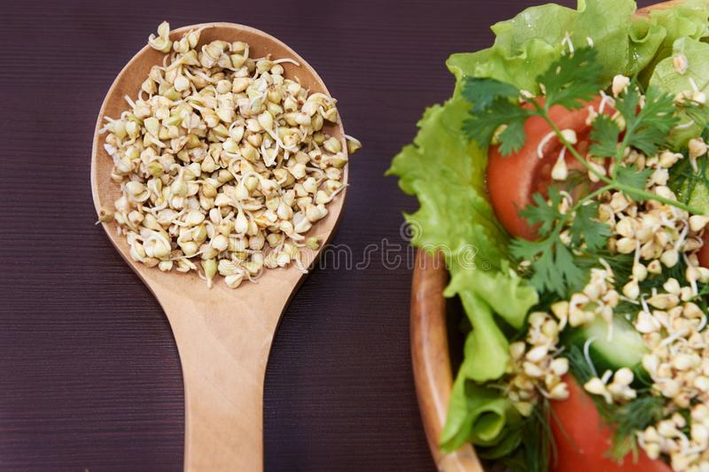 Sprouts. Buckwheat. Health. Vegetarianism. Snack. Salad royalty free stock photography