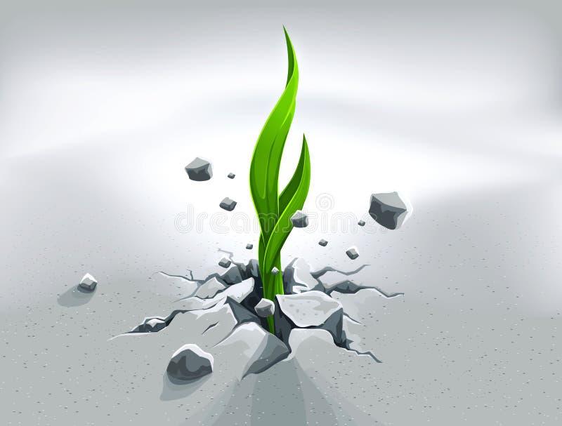 Sprout forte, eliminando ilustração royalty free