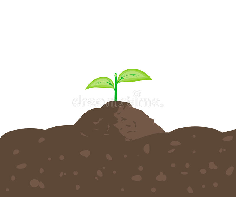 Sprout in the Ground stock illustration