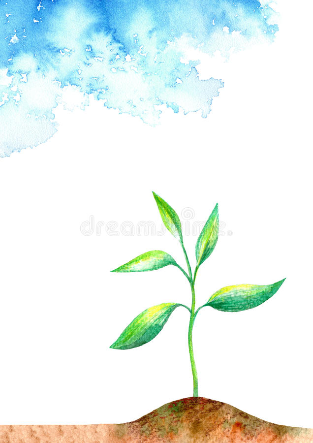 Sprout in the ground and sky. Spring picture.Watercolor hand drawn illustration.White background stock illustration