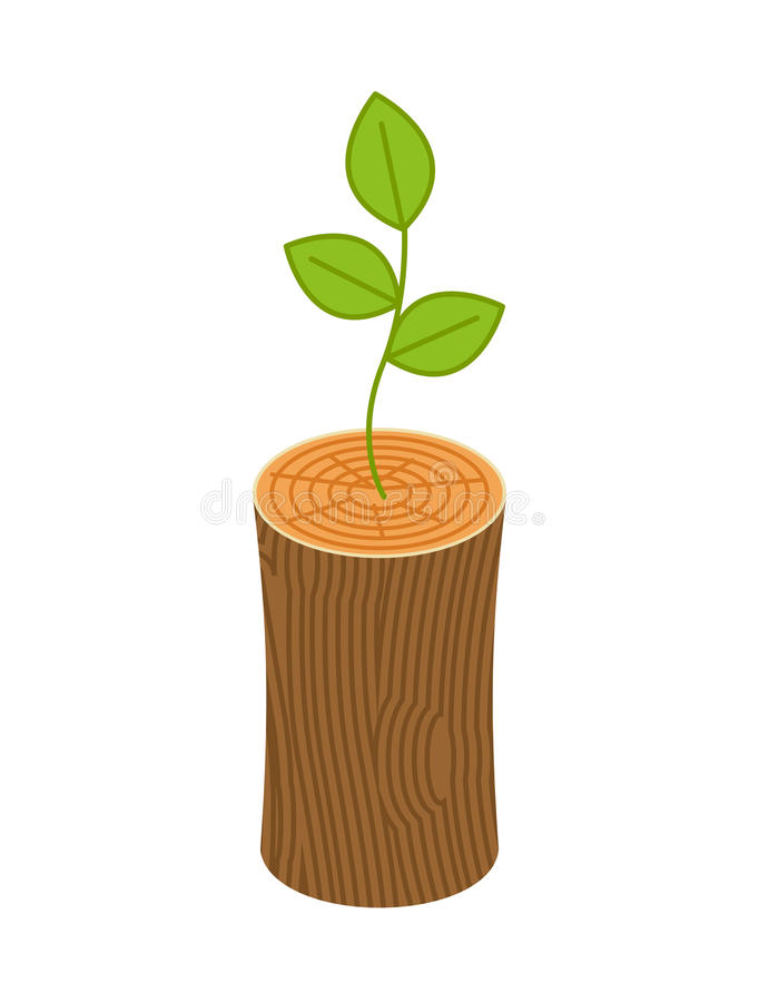 Sprout from logs. New life concept. young plant from Wooden bill. Et royalty free illustration