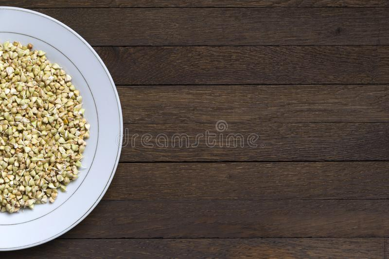 Sprouted buckwheat on half of white plate with copy space. Half of white plate with Sprouted buckwheat inside on wooden table. Close up background with copy stock image