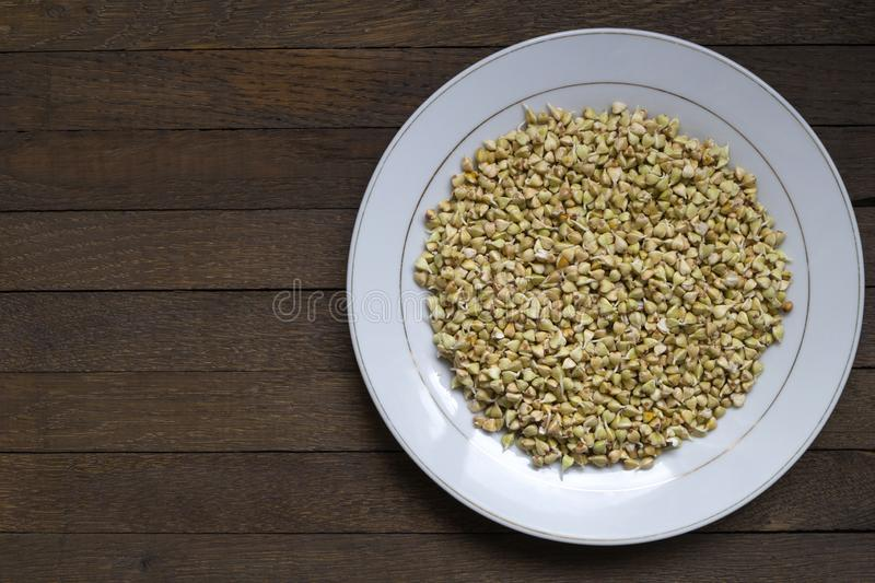 Sprouted buckwheat on white plate with copy space - Right position. White plate with Sprouted buckwheat inside on wooden table. Right position. Top view. Organic royalty free stock photography