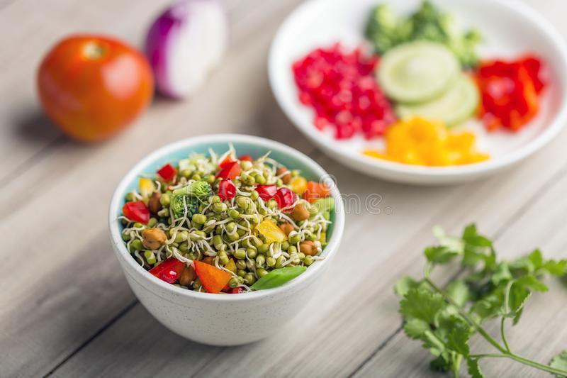 Sprouted lentil salad with sliced lemon. Sprouted salad with sliced lemon served in a bowl for good health stock photography