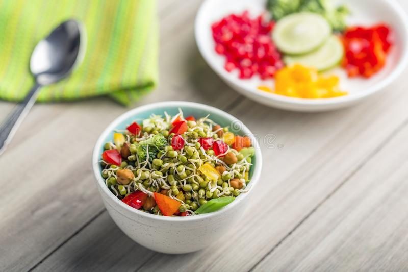 Sprouted lentil salad with sliced lemon. Sprouted salad with sliced lemon served in a bowl for good health royalty free stock images
