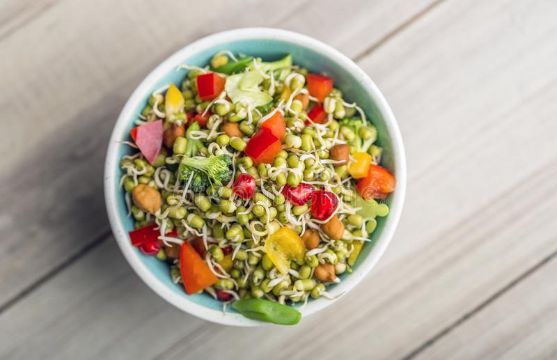 Sprouted lentil salad with sliced lemon. Sprouted salad with sliced lemon served in a bowl for good health royalty free stock photos