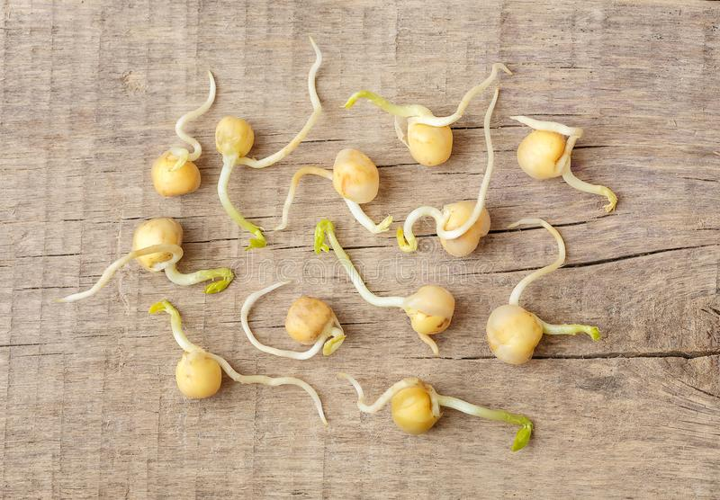 Sprouted peas, sprouts with a root on a wooden background. The view from the top.  stock image