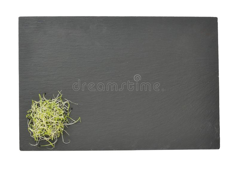 Sprouted seeds of leek posed on a slate. On white background royalty free stock photo