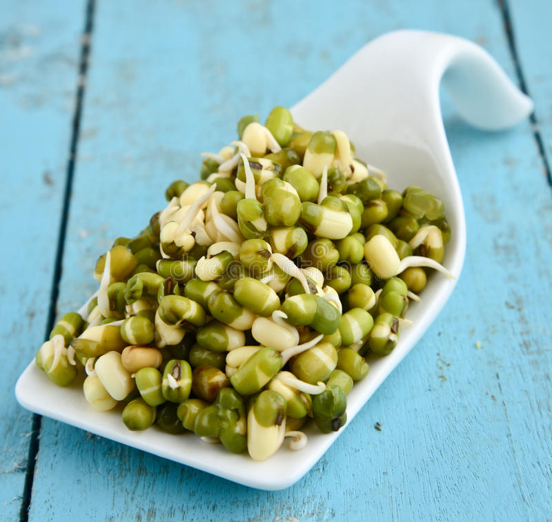 Sprouts- mung beans/green gram. Fresh, healthy sprouted mung dal or moong beans royalty free stock image