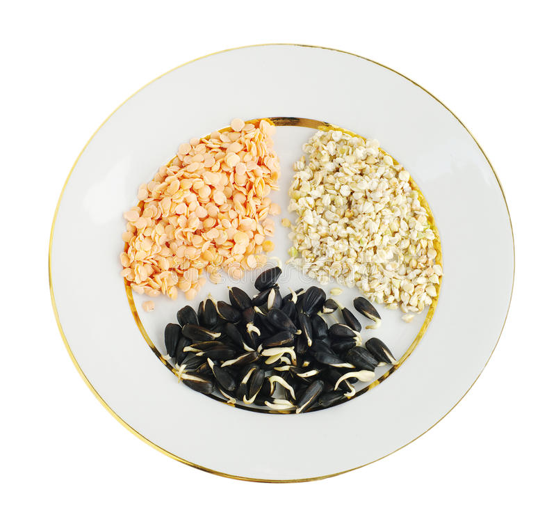 Sprouts of seeds on plate royalty free stock photo