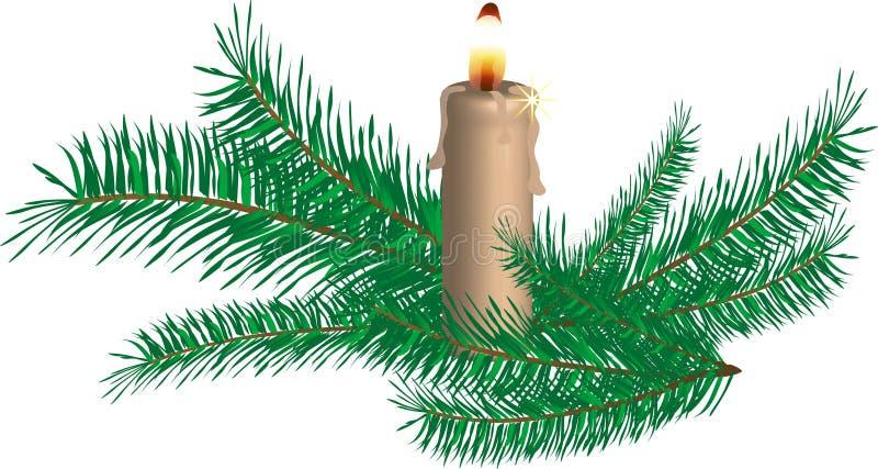 spruce ris för stearinljus stock illustrationer