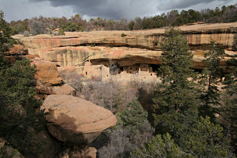 Spruce Tree Canyon and House royalty free stock images