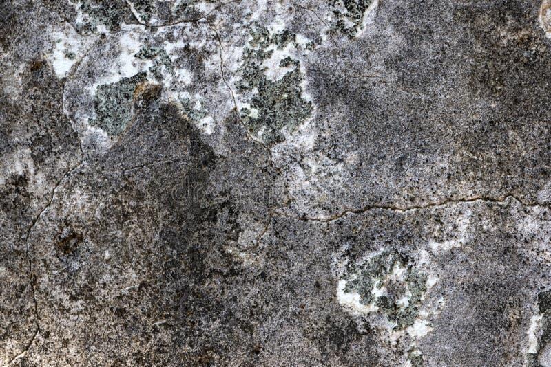 Sprucken Grungebetongväggtextur för bakgrund royaltyfri fotografi