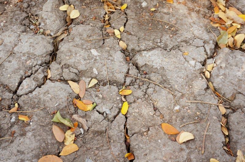 Sprucken jordning och torkar sidatextur arkivbild