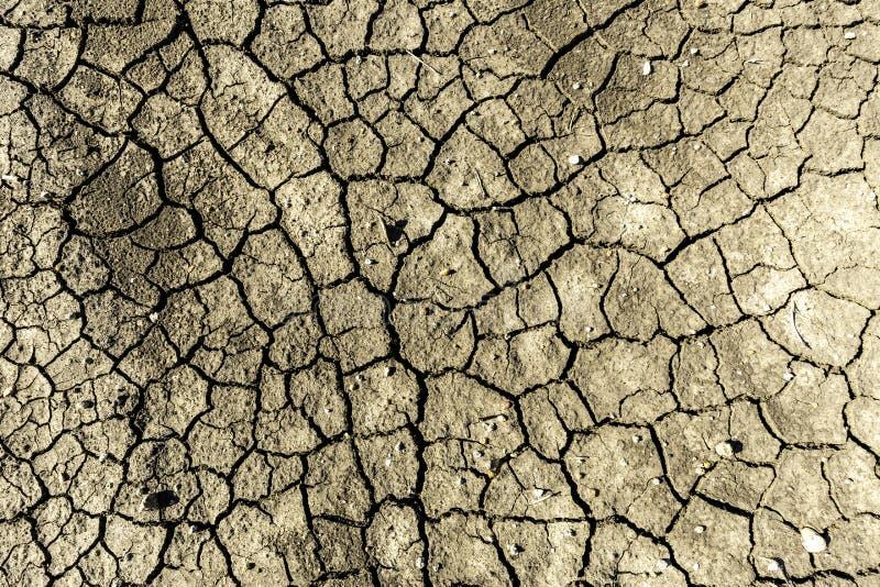 Sprucken lera och effekterna av torkan royaltyfria bilder