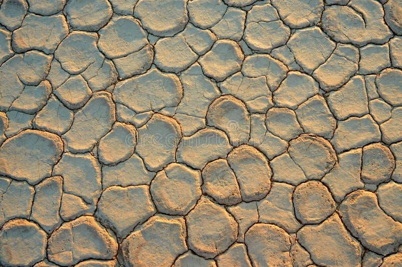 sprucken mud arkivbilder