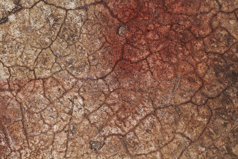 Sprucken röd brunt för abstrakt texturvägg arkivfoto
