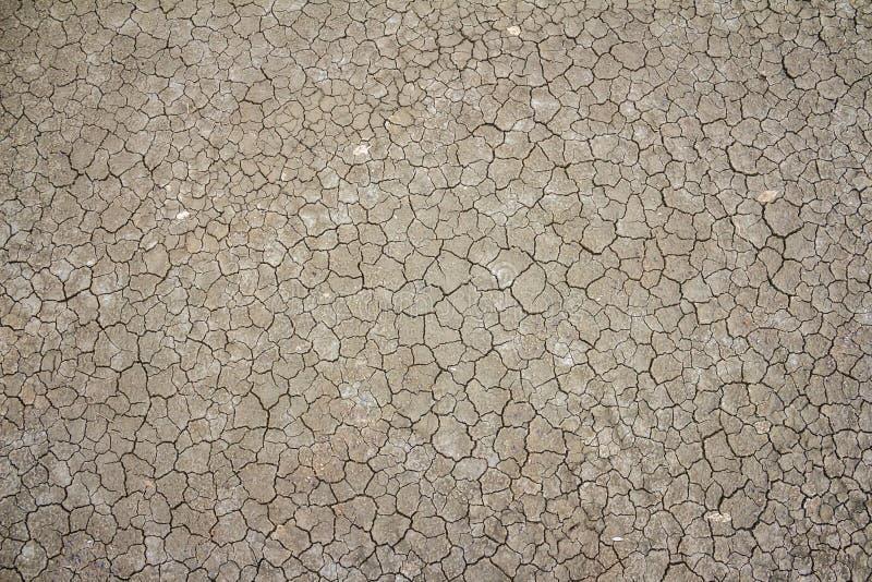 sprucken torkad jordning arkivbilder
