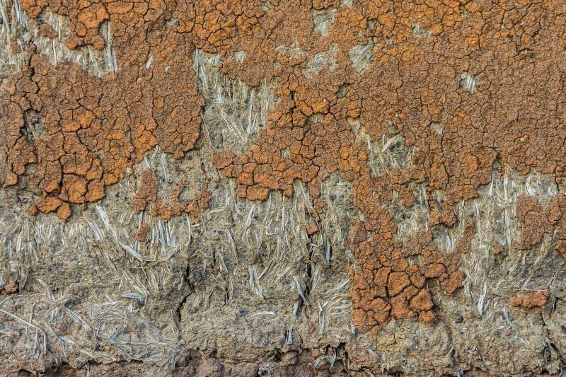 Sprucken vägg av majskolvhuset för bakgrund och textur royaltyfri fotografi