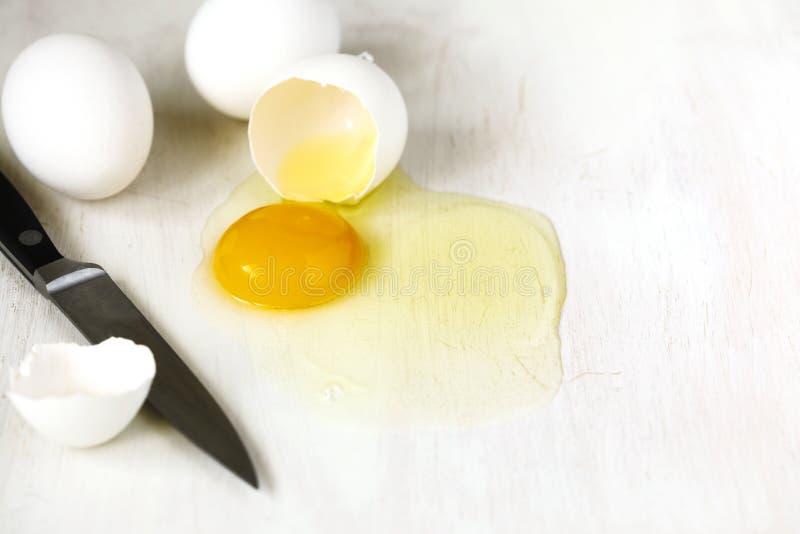 Sprucket ägg med äggskalet, äggula och äggvita på vit bakgrund arkivfoto