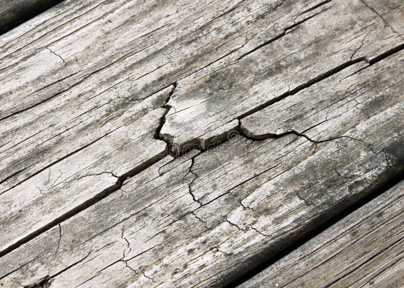 sprucket ridit ut trä arkivbilder